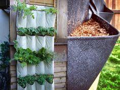 knackfrisch karotten vom balkon karotten wachsen wunderbar im topf oder kasten auf dem balkon. Black Bedroom Furniture Sets. Home Design Ideas