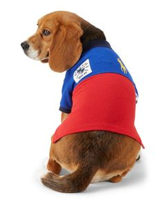 781fe7c90 Color-Blocked Dog Polo Shirt - Ralph Lauren Pet For the Pet - RalphLauren .com