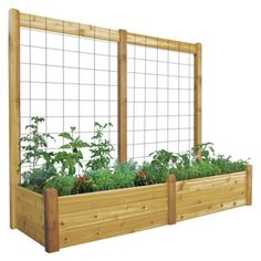 Gronomics Raised Garden Bed with Trellis || This is from Target but the design is so simple it should be a no-brainer to DIY.