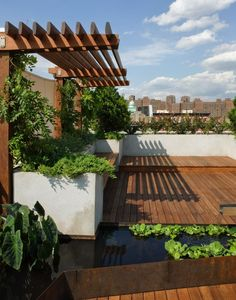 Corten steel pool, clever wooden pergola all on a roof terrace