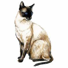 Siamese Cat Art Photo Sculpture