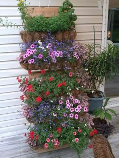 [d]Pallets are usually free and with the right flowers, can make you smile every time you see them.  You can do this!! [/d] [d]YOU CAN DO THIS - First off…