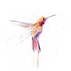 This new giclee print by Dave White contains eye catching spot UV glazing. It is a limited edition print of 50 that is signed and numbered by the artist. In addition to Humming Bird I, Dave White has also created Humming Bird II which together make a deli Watercolor Hummingbird, Watercolor Bird, Bird Illustration, Illustration Artists, Dave White, Black And White Birds, Bird Artwork, Bird Drawings, Bird Pictures