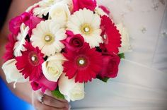 Gerber Daisy's Bouquet.  Root Photography!