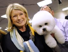 Martha Stewart stops to look at a Bichon Frises in the staging area during the 136th Westminster Kennel Club Annual Dog Show held at Madison Square Garden in New York City on February 13, 2012.