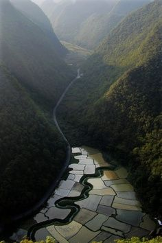 Fields,Southern China