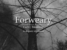 Forweary: to dispirit; to exhaust Unusual Words, Weird Words, Rare Words, Unique Words, Powerful Words, Cool Words, Fancy Words, Words To Use, Pretty Words