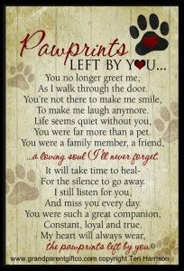 Pawprints Left by You is a beautifully written pet loss poem. The perfect words of sympathy for anyone copying with the loss of a pet, either dog or cat.