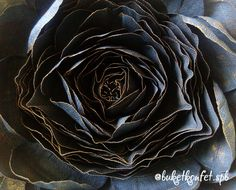 black giant flower