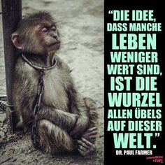 https://www.facebook.com/ProTierschutzWeltweit/photos/a.1532849660291492.1073741828.1532837240292734/1695869377322852/?type=3