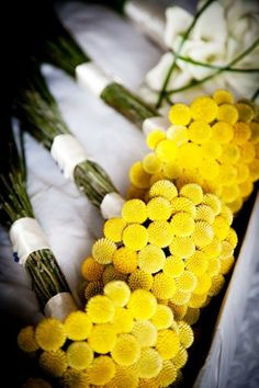 brides of adelaide magazine - primary colours - yellow bouquets - block colour