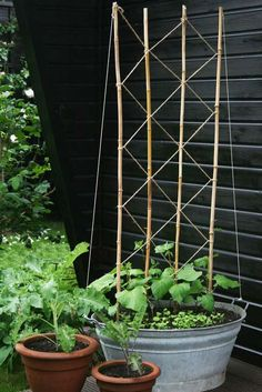 – Frau Meise You are in the right place about Garden Types plants Here we Garden Types, Herb Garden Design, Vegetable Garden Design, Potager Garden, Garden Trellis, Diy Trellis, Container Gardening, Gardening Tips, Organic Gardening