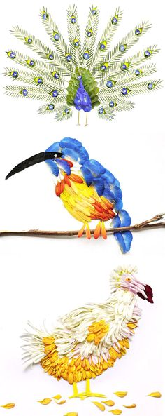 Bird watching has never exactly been my hobby of choice, but in the case of THESE birds? Sign me up! Our fine feathered friends here are made entirely from flower petals, and I must say that I&#821…