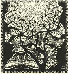 escher -farfalle, metamorfosi