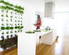 Minigarden Vertical – Galería