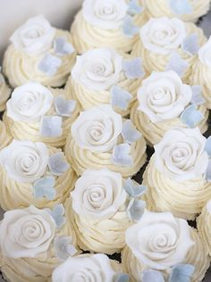 Rose and Hydrangea Cupcakes