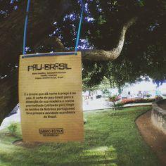 Blog do Rio Vermelho, a voz do bairro: Parabéns ao bairro-escola Rio Vermelho por essa in...