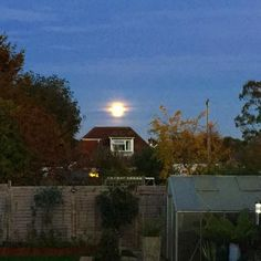 #supermoon looking more like a #sunrise than #moonrise #sussex #fullmoon