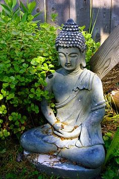"""""""Buddhism teaches us that happiness does not come from any kind of acquisitiveness, be it material or psychological. Happiness comes from letting go. In Buddhism, the impenetrable, separate, and individuated self is more of the problem than the solution.""""  ~ Mark Epstein  ॐ lis"""