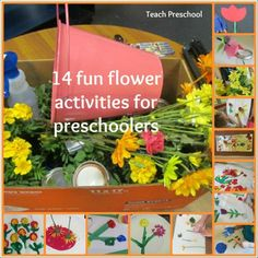 14 fun flower activities collage for preschoolers by Teach Preschoolers