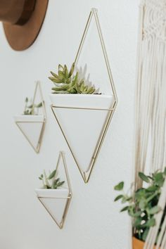 10 Cute Ways to Hang House Plants | LivvyLand
