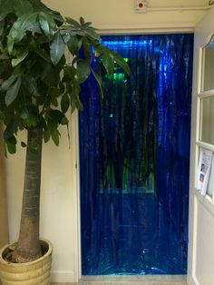 Entrance to our Jungle theme classroom via a waterfall