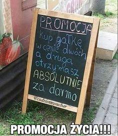 Weekend Humor, Chalkboard Quotes, Art Quotes, Lol, Funny, Memes, Instagram Posts, Wattpad, Meme