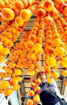 Korean Got Gam, or dried persimmons
