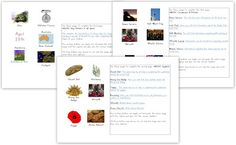 Free Printable Anzac Unit For Young Learners Anzac Day Australia, Ww1 Photos, Literacy And Numeracy, History Activities, Primary Resources, Mentor Texts, Teaching Social Studies, Remembrance Day, Writing Workshop