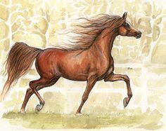 the arabian horse watercolor painting by AngelHorses on Etsy