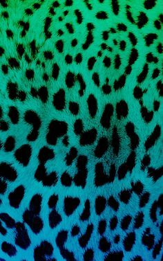 Resultado de imagen para cocoppa wallpaper animal print