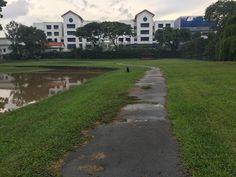 Singapore City, Sidewalk, Sidewalks, Pavement, Walkways