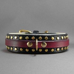 Traditional Dog Collars - TheDogPuppies.com :