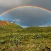 Think You Know Rainbows? Look Again