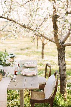 Sweetheart Table under a Blooming Cherry Tree | Momento Cativo Photography | http://heyweddinglady.com/delicate-cherry-blossom-wedding-ideas-rose-quartz