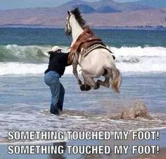 When I'm swimming, and I touch seaweed, or a fish swims across my foot...