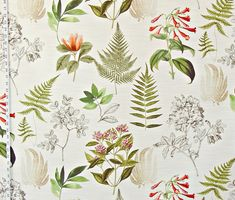 Fern fabric magnolia floral botanical toile from Brick House Fabric: Novelty Fabric