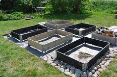 Advice on everything gardening Garden Mum, Garden Care, Garden Boxes, Autumn Garden, Edible Garden, Garden Planning, Garden Projects, Backyard Landscaping, Vegetable Garden