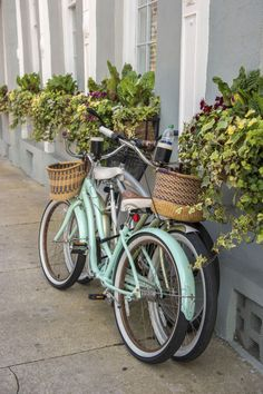 25 Photos That Prove Charleston, SC is the Most Charming City Ever  - CountryLiving.com