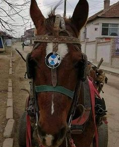 One horse power BMW – Odd Stuff Magazine Unusual News, Bizarre News, Benz, Weird Pictures, Weird Facts, Christmas Photos, Funny Posts, Concept Cars, Haha