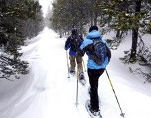 Learn how to snowshoe! Everything you need to know about gear, technique, safety.