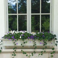 Cream colored PVC window box painted to match window trim.  Nice trailing Vinca vine.