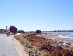 Missing these wide open spaces and colourful textured landscapes  #rottnestisland #westernaustralia #perth #bikeride #landscape #scenery by amoondies http://ift.tt/1L5GqLp