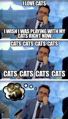 Robert Downey Jr. just really, really loves cats, OK?
