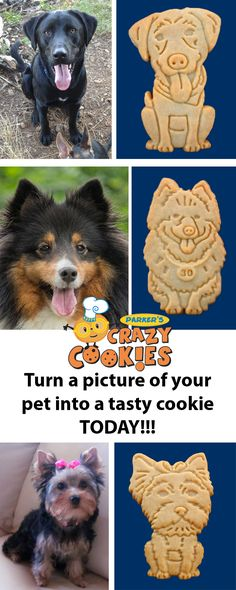For pet owners that love to celebrate their pet look no further then Parker's Crazy Cookies! We make cookies that look like your pet. Discover the magic at www.parkerscrazycookies.com. As seen on the Food Network Channel.