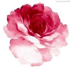 #tattoo #flower #rose