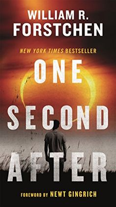 One Second After by William R. Forstchen http://www.amazon.com/dp/0765356864/ref=cm_sw_r_pi_dp_IipCvb0EFK37X