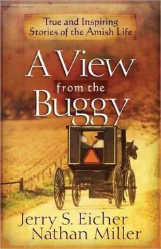 A collection of reminiscences from more than thirty Amish men and women shed light on daily Amish life and values, including their thoughts on hard work, community, happiness, and tragedy.