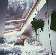 Luv the room! The plant is a nice touch to the natural color palette