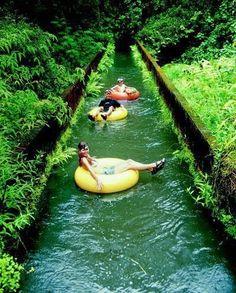 Tubing Canals. Kauai, Hawaii